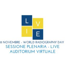 Plenaria 8 novembre